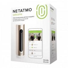 IP камера Netatmo Welcome Camera серебристый